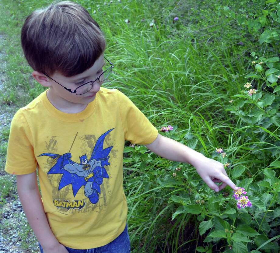 Five-year-old Jeremy Garcia of San Antonio checks out a lantana flower growing at Choke Canyon State Park after learning from park ranger Paul Jaure that the flower and leaves was used by Native Americans as an insect repellent. Photo: Ralph Winingham /For The Express-News
