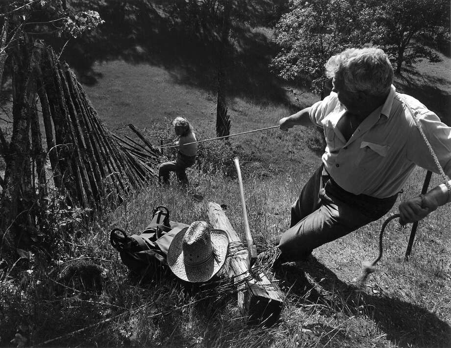 """Fence Pulling"" was taken in 1950 by Hansel Mieth and Otto Hagel in Sonoma County. Photo: Hansel Mieth And Otto Hagel © 1998 Center For Creative Photography, The University Of Arizona Foundation"