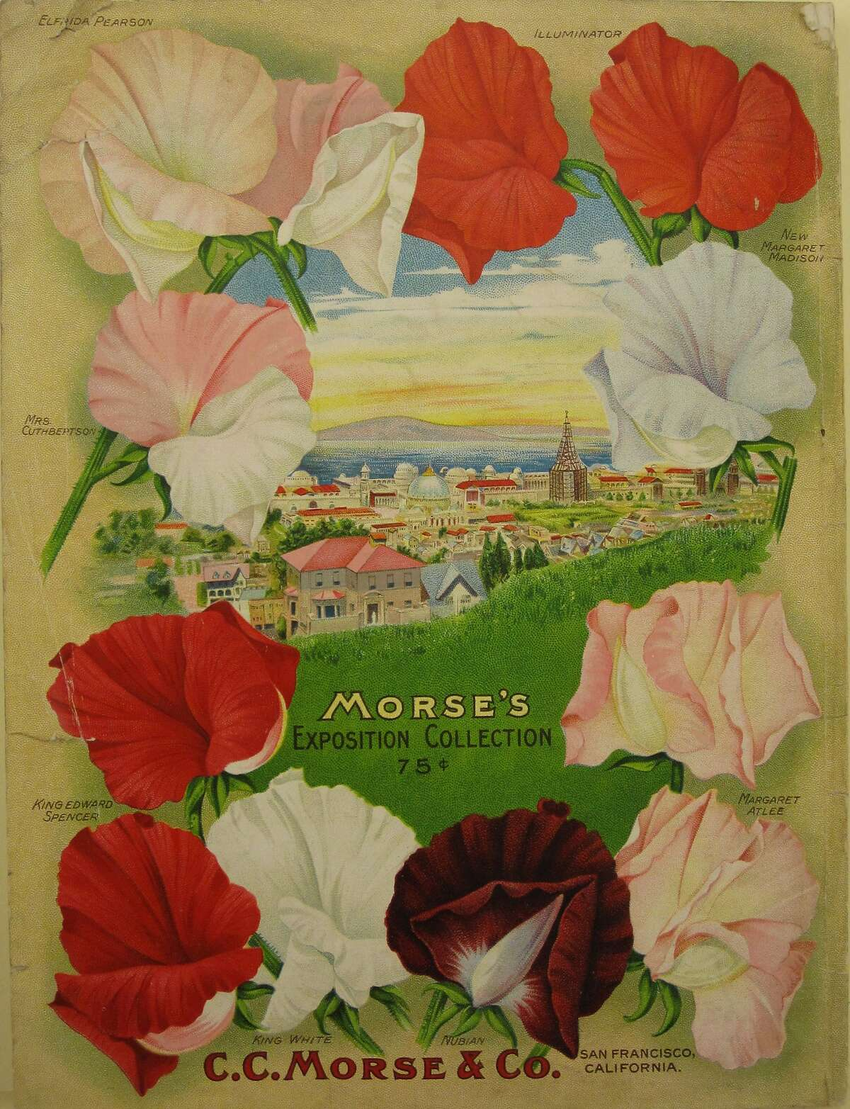 Credit: Courtesy, California Historical Society, Business Ephemera Collection Caption: The back cover from a 1915 Morse Seed Catalog showed the Panama-Pacific International Exposition, with the Bay and the Marin shoreline in the background.