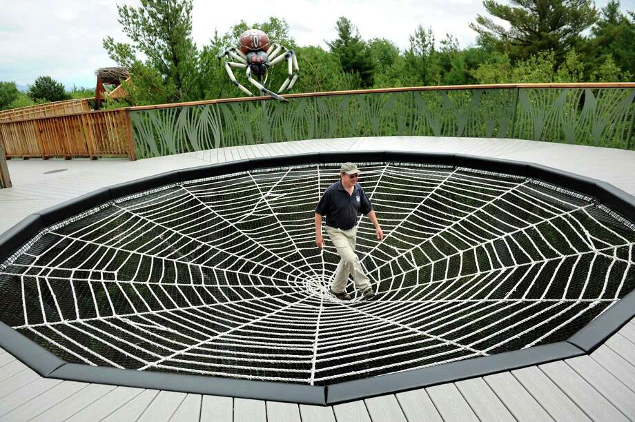 Dave St. Onge, facilities manager, walks across the Giant Shamrock Spider Web that's part of the new Wild Walk on Tuesday, June 23, 2015, at the Wild Center in Tupper Lake, N.Y. (Cindy Schultz / Times Union) Photo: Cindy Schultz / 00032307A