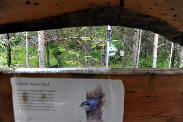 The bird viewing blind looks out to feeders on new Wild Walk on Tuesday, June 23, 2015, at the Wild Center in Tupper Lake, N.Y. (Cindy Schultz / Times Union) Photo: Cindy Schultz / 00032307A