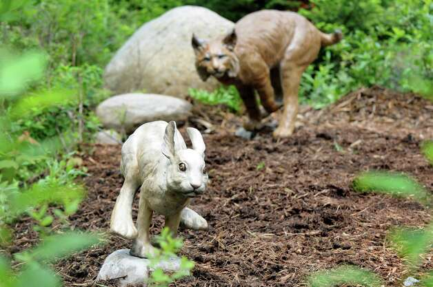 Lifelike statues of a bobcat chasing dinner are part of the new Wild Walk on Tuesday, June 23, 2015, at the Wild Center in Tupper Lake, N.Y. (Cindy Schultz / Times Union) Photo: Cindy Schultz / 00032307A