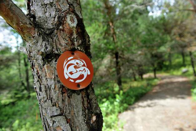 Trail marker on the path of the new Wild Walk on Tuesday, June 23, 2015, at the Wild Center in Tupper Lake, N.Y. (Cindy Schultz / Times Union) Photo: Cindy Schultz / 00032307A