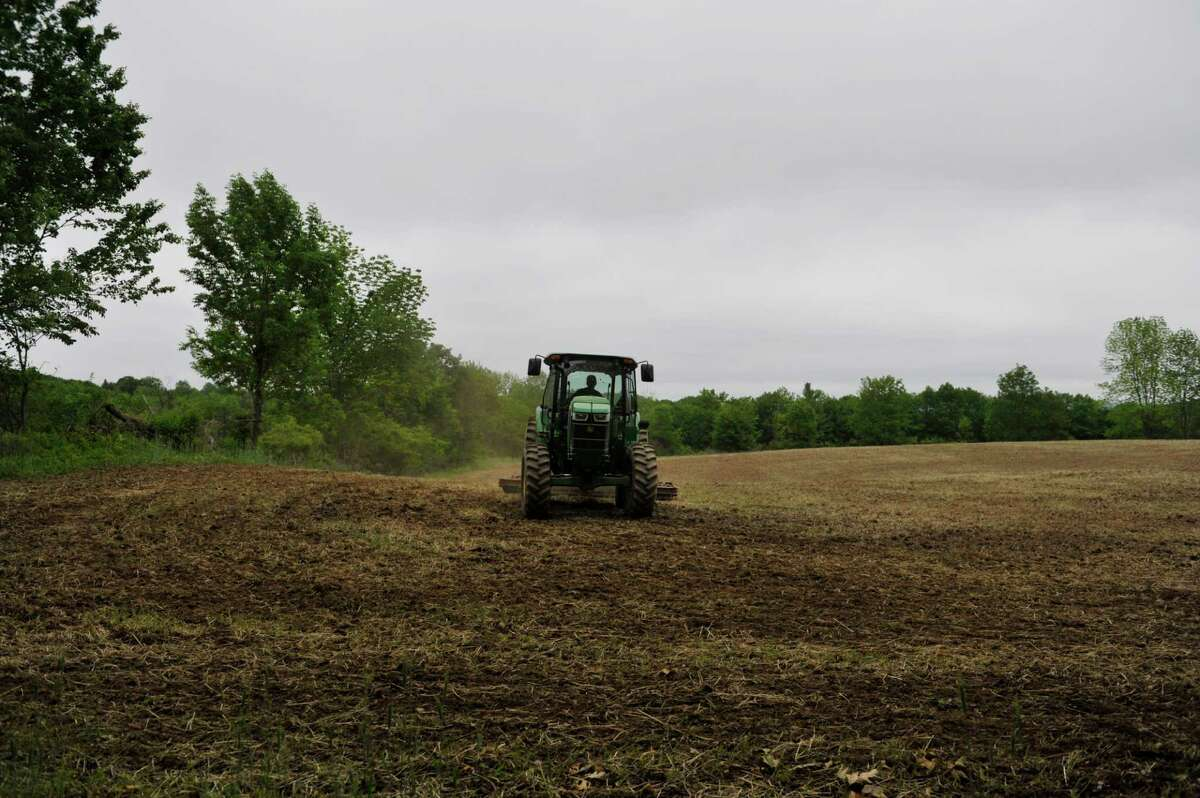 Ed Phelps works in the filed on his daughter and her husband's farm on Thursday, June 3, 2015, in Nassau, N.Y. (Paul Buckowski / Times Union)