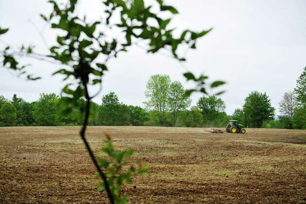Ed Phelps works in the filed on his daughter and her husband's farm on Thursday, June 3, 2015, in Nassau, N.Y.    (Paul Buckowski / Times Union) Photo: PAUL BUCKOWSKI / 00032087A