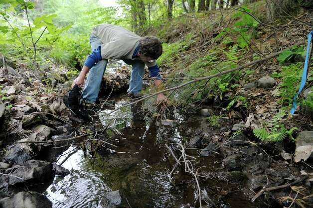 Ecologist David Hunt searches a tributary of the Valatie Kill for minnows on Thursday, June 3, 2015, in Nassau, N.Y.  Northeast Energy Direct  has proposed to build a pipeline that would run under this tributary.  Hunt has done a bio diversity report for the town of Nassau on the areas where the pipe line would go.  Hunt says that if the gas pipeline were to leak, that leak could find its way to the Valatie Kill by way of this tributary.  (Paul Buckowski / Times Union) Photo: PAUL BUCKOWSKI / 00032087A