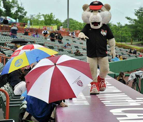 Tri-City ValleyCats mascot Southpaw keeps fans' spirit up   during a rainy Saturday night's game against the Staten Island Yankees at Joe Bruno Stadium  June 27, 2015 in Troy, NY.  (John Carl D'Annibale / Times Union) Photo: John Carl D'Annibale / 00032383A