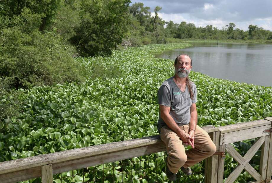 Mark Kramer received an award last month from the Bayou Preservation Association for his work at Armand Bayou in Pasadena. Photo: Jon Shapley, Staff / © 2015 Houston Chronicle