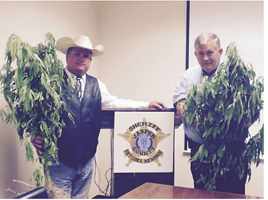 Lt. Scott Duncan and Sheriff newman with some of the confiscated plants. courtesy photo