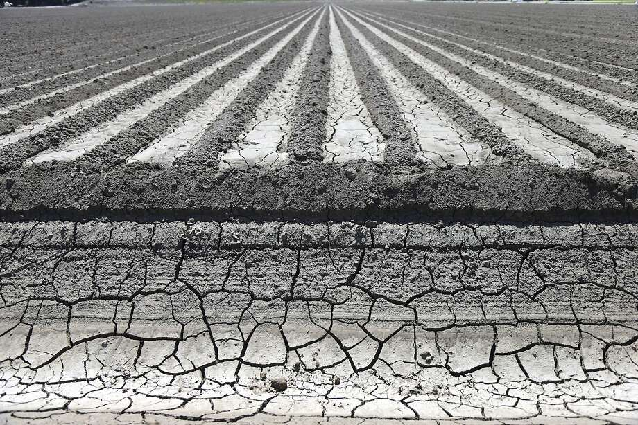An irrigation canal near a parched field in Manteca, Calif., April 24, 2015.  Photo: Jim Wilson, New York Times