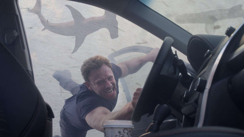 Movies about sharks - StamfordAdvocate