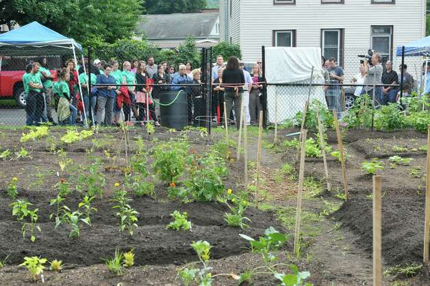 People gather at the entrance to the garden for the grand opening of the Capital Roots Ida Street Community Garden on Wednesday, July 1, 2015, in Troy, N.Y.  The  Ida Street Community Garden is the 50th community garden started by Capital Roots.  The garden was created in collaboration with the Troy Little Italy Neighborhood Association and a variety of private individuals and families.    (Paul Buckowski / Times Union) Photo: PAUL BUCKOWSKI / 00032426A