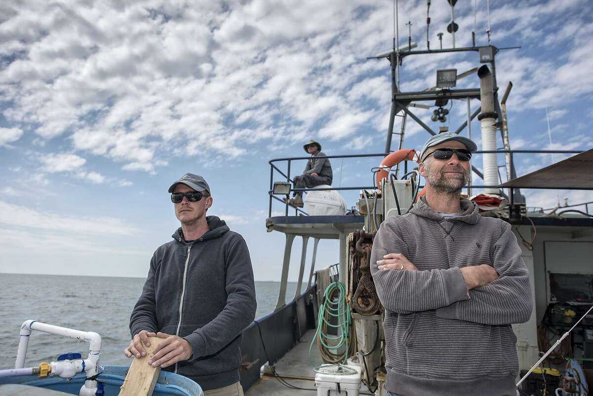 James Blake, left, and director Nick Stringer, right, on the deck off the coast of Fernandina Beach, Fla., as they film footage for Shark Week's upcoming