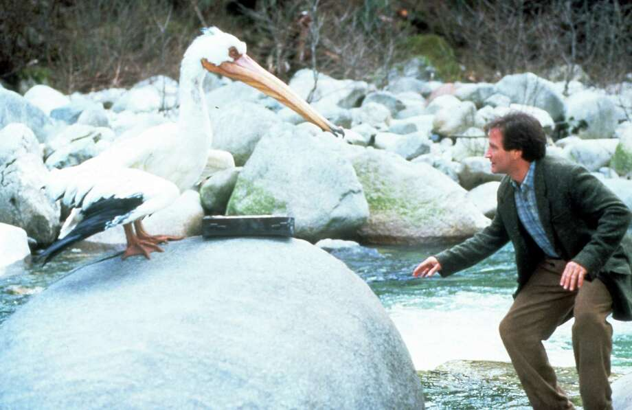 "The late Robin Williams faces off with a heron in a scene from the 1995 film ""Jumanji."" The movie will be shown at Commons Park in Stamford on Friday, July 3. It is one of two outdoor movies in Stamford that night. Mill River Park will be showing ""Jurassic Park."" (Photo by TriStar/Getty Images) Photo: Columbia TriStar / Getty Images / 2012 Getty Images"