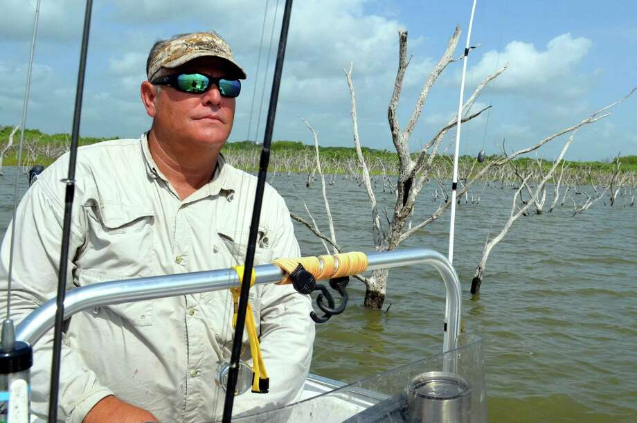 David Crews of Falls City maneuvers his boat through the tree-studded shoreline of Choke Canyon Reservoir in search of blue catfish lurking in the shallows where brush has been submerged by a runoff from recent rainfall —creating a fish-rich environment. Photo: Ralph Winingham /For The Express-News