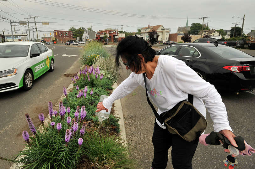 Dee Smith, a member of the Friends of Cummings, West and Czecik Parks, waters plants on the median o