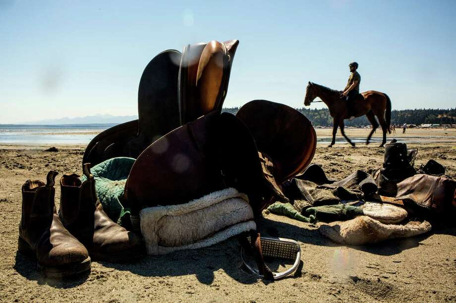 Riders gear up before taking their steeds into the waters of Useless Bay Friday, July 3, 2015, on Whidbey Island, Washington. Photo: JORDAN STEAD, SEATTLEPI.COM / SEATTLEPI.COM