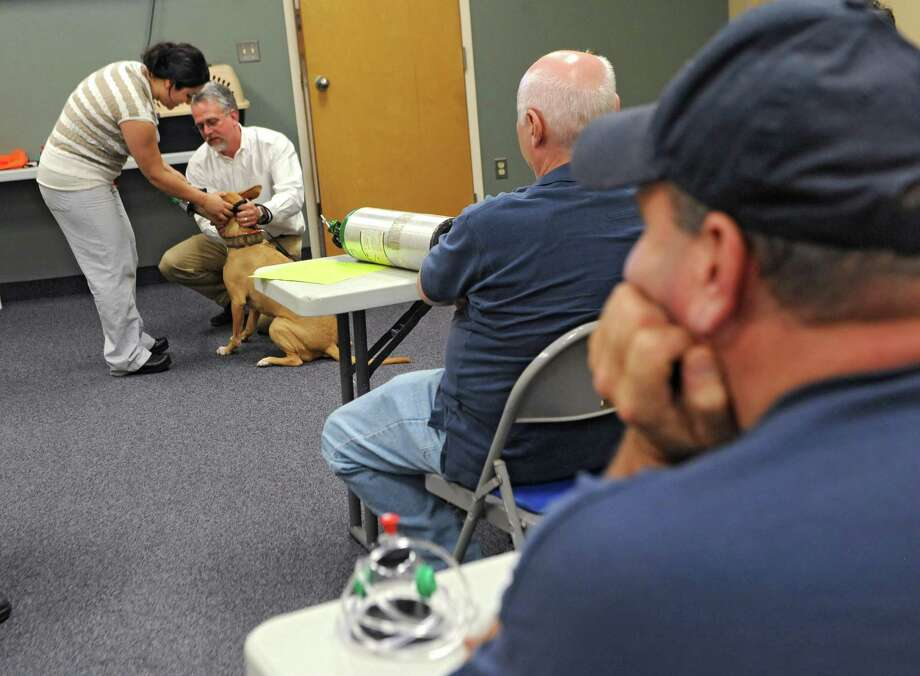 Veterinarian Amanda Little and hospital administrator Ken Wolfe of Shaker Veterinary Hospital demonstrate on Jada the dog how to put oxygen masks on at the Shaker Road-Loudonville Fire Department on Tuesday, July 7, 2015 in Colonie, N.Y.  (Lori Van Buren / Times Union) Photo: Lori Van Buren / 00032529A