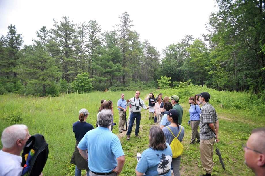 Neil Gifford, background center, conservation director for the Albany Pine Bush Preserve Commission, leads of tour of commission members and other guests inside an area of the Pine Bush on Tuesday, July 7, 2015, in Albany, N.Y.   (Paul Buckowski / Times Union) Photo: PAUL BUCKOWSKI / 00032132A