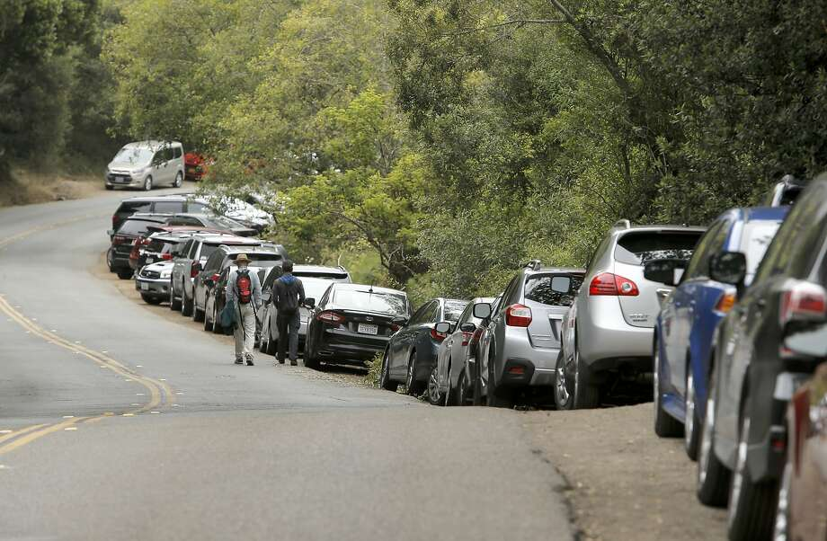 Visitors along Muir Woods Road find parking then walk towards the entrance at Muir Woods National Park, in Mill Valley, Calif., as seen on Thurs. July 9, 2015, Photo: Michael Macor, The Chronicle