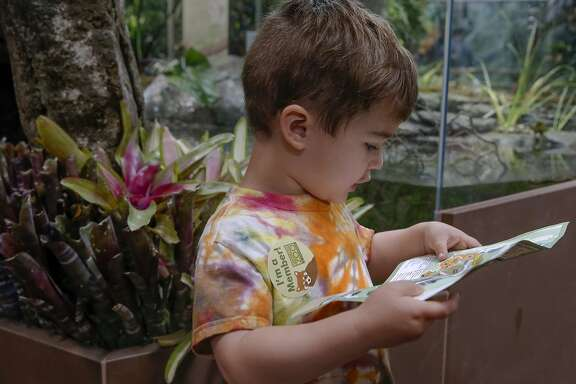 Henry Dahlman, 4 of Mill Valley,  checks his visitor guide as the San Francisco Zoo opens their new South American Tropical Rainforest and Aviary  in San Francisco, Calif., Calif., on Sat. July 11, 2015.