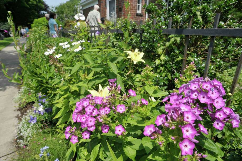 A view of  the garden at 8 Pinewood Ave. on Sunday, July 12, 2015, in Saratoga Springs, N.Y.  This backyard garden was one of the locations for the Saratoga Secret Gardens Tour.  The Secret Gardens Tour is sponsored by Soroptimist International of Saratoga County as a fundraiser for the organization.  The Soroptimist International of Saratoga County is an organization made up of business and professional women who work to improve the lives of women and girls in the community.   (Paul Buckowski / Times Union) Photo: PAUL BUCKOWSKI / 00032580A