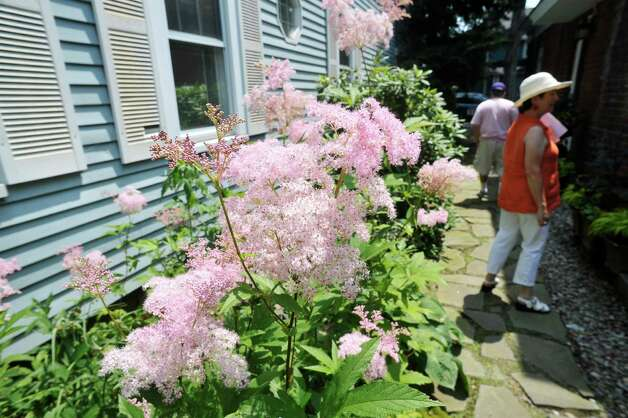 People make their way past filipendula rubra as they walk through the garden at 8 Pinewood Ave. on Sunday, July 12, 2015, in Saratoga Springs, N.Y.  This backyard garden was one of the locations for the Saratoga Secret Gardens Tour.  The Secret Gardens Tour is sponsored by Soroptimist International of Saratoga County as a fundraiser for the organization.  The Soroptimist International of Saratoga County is an organization made up of business and professional women who work to improve the lives of women and girls in the community.   (Paul Buckowski / Times Union) Photo: PAUL BUCKOWSKI / 00032580A