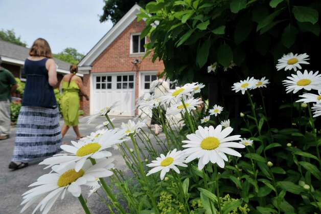 Daisies line the side of the driveway as people make their way into the garden at 8 Pinewood Ave. on Sunday, July 12, 2015, in Saratoga Springs, N.Y.  This backyard garden was one of the locations for the Saratoga Secret Gardens Tour.  The Secret Gardens Tour is sponsored by Soroptimist International of Saratoga County as a fundraiser for the organization.  The Soroptimist International of Saratoga County is an organization made up of business and professional women who work to improve the lives of women and girls in the community.   (Paul Buckowski / Times Union) Photo: PAUL BUCKOWSKI / 00032580A