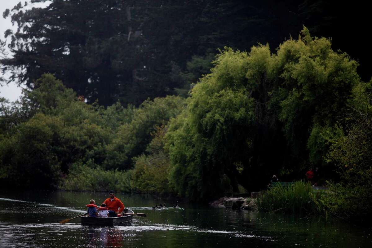 Rent a rowboat at Stow Lakein Golden Gate Park. After paddling, walk around the lake and head over one of the bridges to enjoy the trails of Strawberry Hill. There's lots to discover, including a waterfall and a peace pagoda, and nice views from the summit.