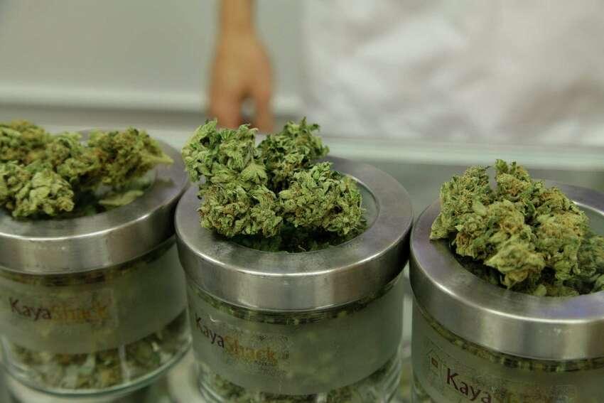Marijuana legalization 50% of Texans oppose legalizing marijuana, butof those who oppose, 57% support decriminalization.