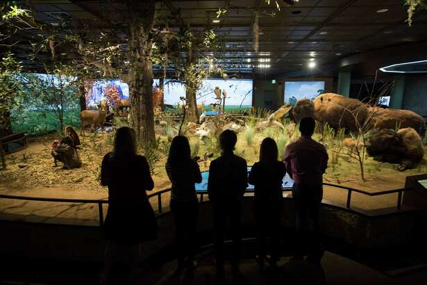 Expect to see some wildlife at the Houston Museum of Natural Science's Mixers & Elixers party Saturday.