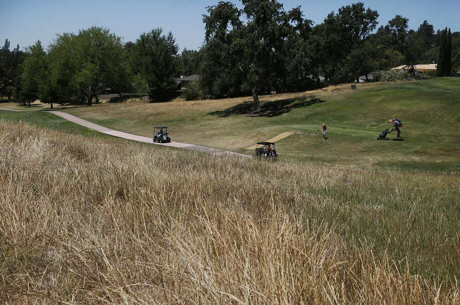 Golfers move down hole #12 at the Diablo Country Club July 15, 2015 in Diablo, Calif. The club has cut back on their irrigation by 35-40 percent, leaving swaths of brown grass throughout the course. Photo: Leah Millis, The Chronicle