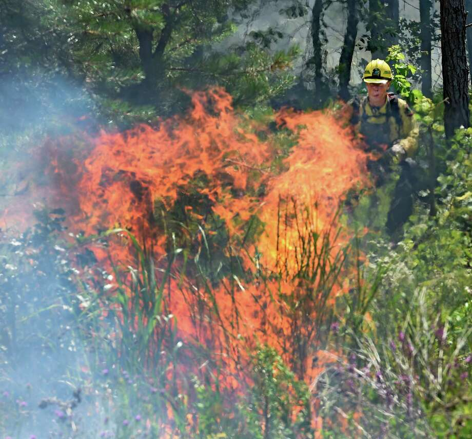A Forest Ranger lays down a line fire Thursday afternoon in the Pine Bush Preserve July 16, 2015, in Albany, N.Y. The fires are set to burn off old vegetation making way for new plants favored by species, such as Karner Blue butterfly. (Skip Dickstein/Times Union) Photo: SKIP DICKSTEIN