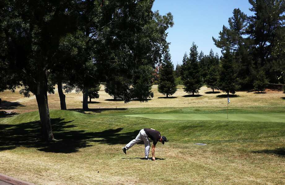Chris Gilman prepares for a shot at hole #9 at the Diablo Country Club July 15, 2015 in Diablo, Calif. The club has cut back on their irrigation by 35-40 percent, leaving swaths of brown grass throughout the course. Photo: Leah Millis, The Chronicle