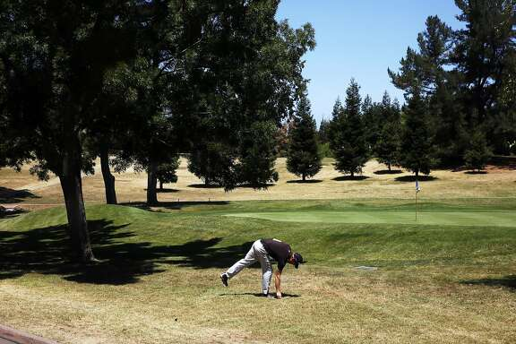 Chris Gilman prepares for a shot at hole #9 at the Diablo Country Club July 15, 2015 in Diablo, Calif. The club has cut back on their irrigation by 35-40 percent, leaving swaths of brown grass throughout the course.