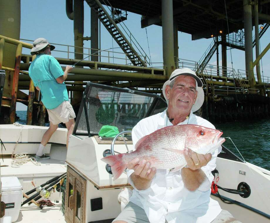 Red snapper, the most popular reef fish among the Gulf of Mexico's recreational anglers and commercial fishers, is the focus of ongoing contention and controversy even as the fishery has significantly rebounded from low populations in the 1980s and '90s. Photo: Shannon Tompkins, Staff / Houston Chronicle