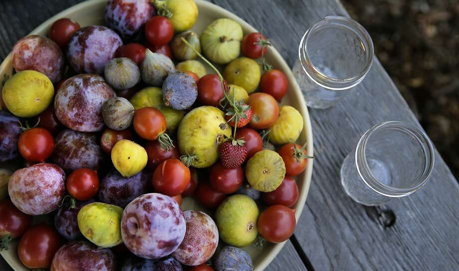Fresh fruits and vegetables are in place as Elly Hartshorn hosts a wine tasting for the volunteers that helped out  at her small vineyard at Alemany Farm in San Francisco, Calif., as seen on Sat. July 18, 2015. Elly Hartshorn started her vineyard by planting grapes in a slice of parkland above the Alemany Farmers Market, where she volunteered. Photo: Michael Macor, The Chronicle