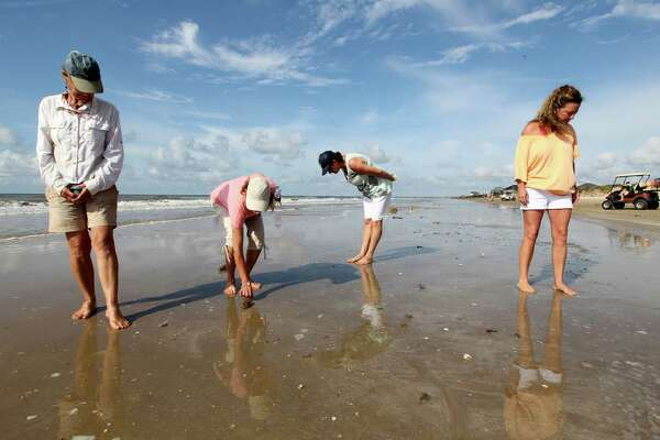 ADVANCE FOR MONDAY, JULY 6 AND THEREAFTER - In this photo taken on Tuesday, June 23, 2015, beachcombers Ange Scheibel, from left, Linda McCauley, Margaret Lindow and Tracy Barnett search at the waters edge at Crystal Beach, in Texas.  (Jennifer Reynolds/The Galveston County Daily News via AP)