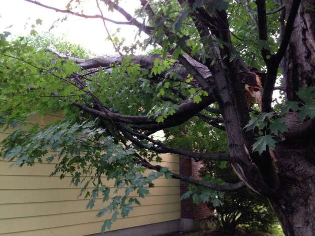 A large tree limb fell onto Kathy Reed's home during severe weather that blew through Valatie, N.Y., Sunday, July 19, 2015.