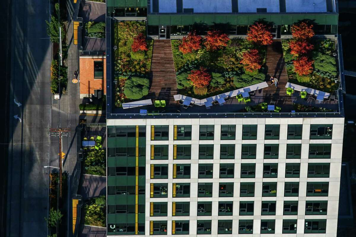 A Seattle rooftop deck is shown complete with trees.
