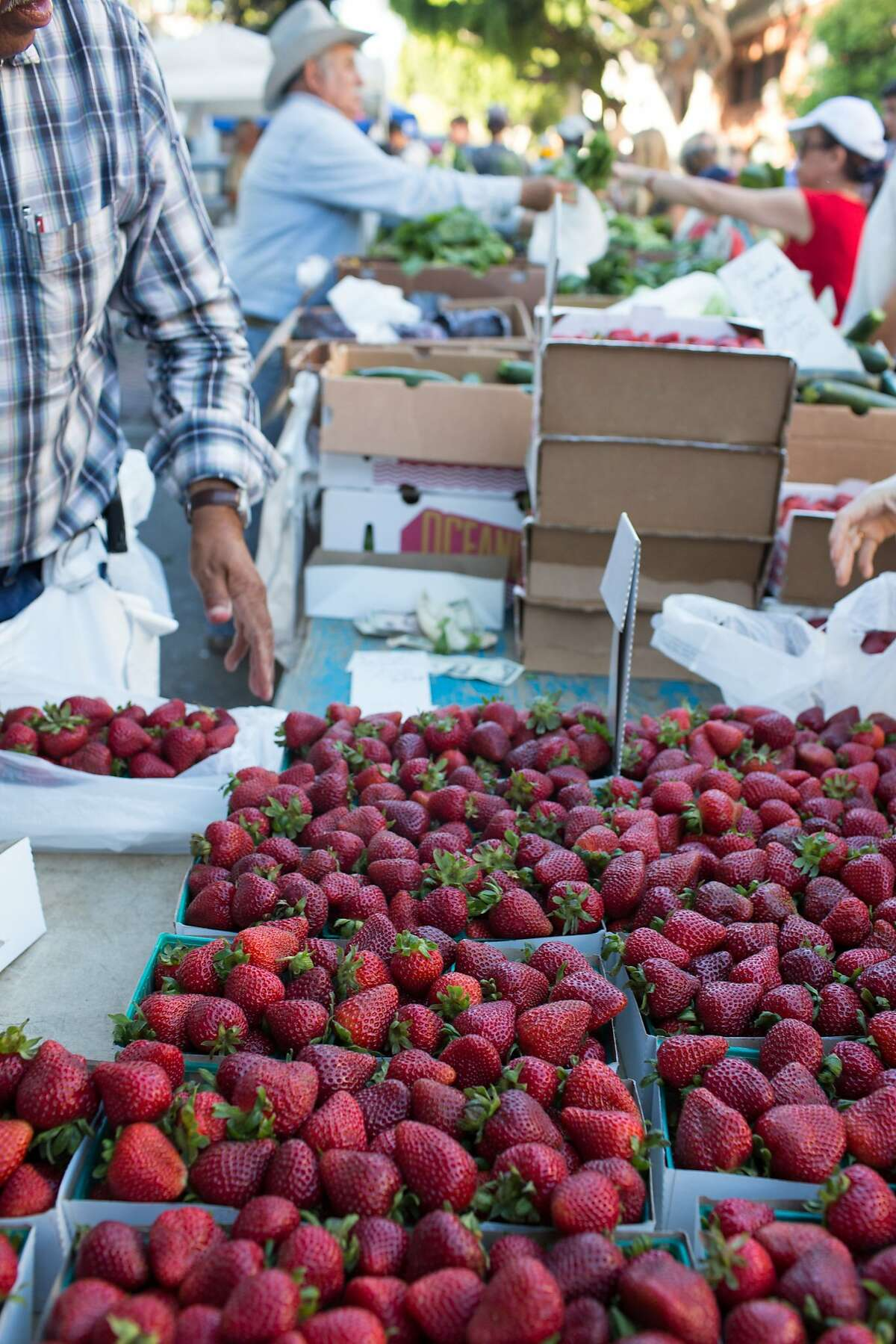 These are some of the fruits found at the Thursday night market in San Luis Obispo, Calif., Thursday July 16, 20015. (photo by Randi Lynn Beach)