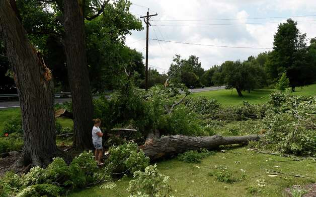 Homeowner Cindy Wheeler surveys the tree damage on her property at 273 Route 23B Monday morning July 20, 2015 after an evening storm with heavy rain and high winds struck the area in Niverville, N.Y.       (Skip Dickstein/Times Union) Photo: SKIP DICKSTEIN