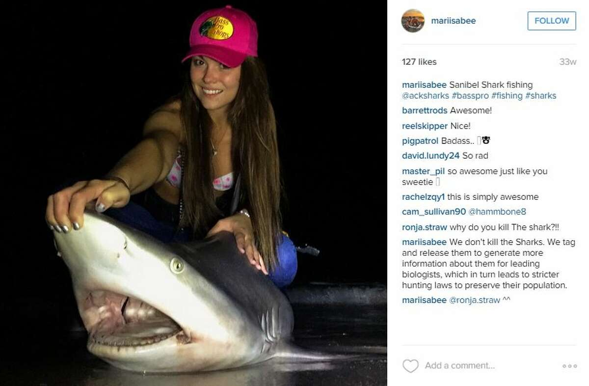 Former Miss Maine contestant Marisa Butler learned how to fish in October of 2014, but the quick learner has speedily upgraded to shark fishing; all in the name of conservation. At 21-years-old, she has caught and tagged 30 sharks, some weighing more than her.