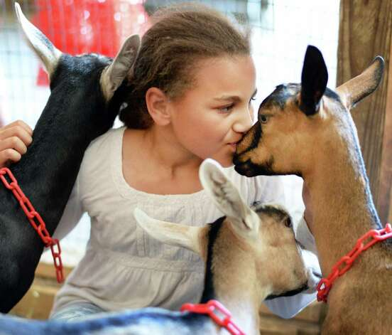 Ten-year-old Nicole Gerdes, left, of Mithrandir Farm in Saratoga Springs with her goats as the Saratoga County Fair begins Tuesday July 21, 2015 in Ballston Spa, NY.  (John Carl D'Annibale / Times Union) Photo: John Carl D'Annibale / 00032674A