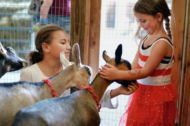 Ten-year-old Nicole Gerdes, left, of Mithrandir Farm in Saratoga Springs proudly shows off her goats to Leia Hopkins, 5, of Clifton Park as the Saratoga County Fair begins Tuesday July 21, 2015 in Ballston Spa, NY.  (John Carl D'Annibale / Times Union) Photo: John Carl D'Annibale / 00032674A