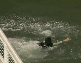Sean Tai takes a swim and retrieves the ball