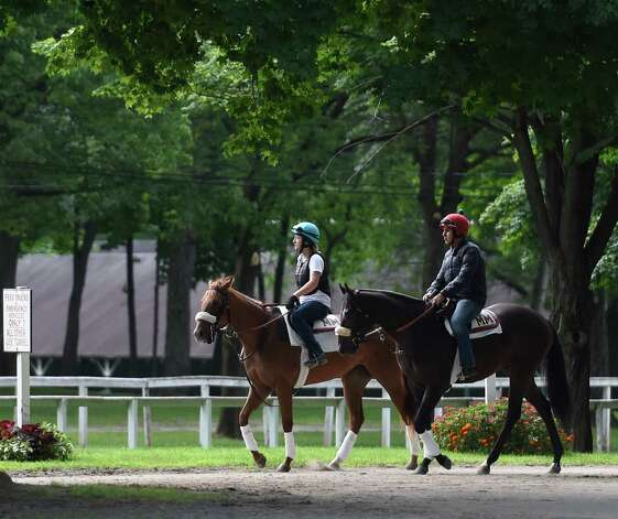 Horses take to the main track for exercise at Saratoga Race Course Wednesday morning July 22, 2015, with two days before opening day in Saratoga Springs, N.Y. (Skip Dickstein/Times Union) Photo: SKIP DICKSTEIN