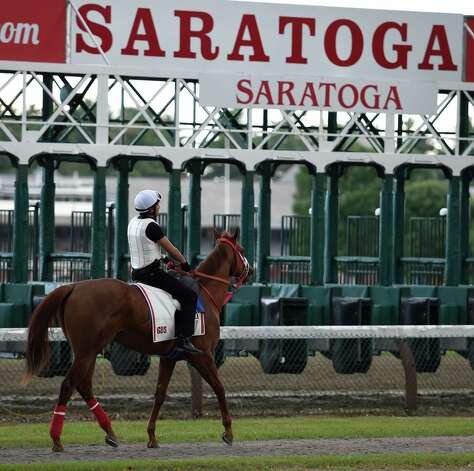 Horses take to the main track for exercise at Saratoga Race Course Wednesday morning, July 22, 2015, with two days before opening day in Saratoga Springs, N.Y. (Skip Dickstein/Times Union) Photo: SKIP DICKSTEIN