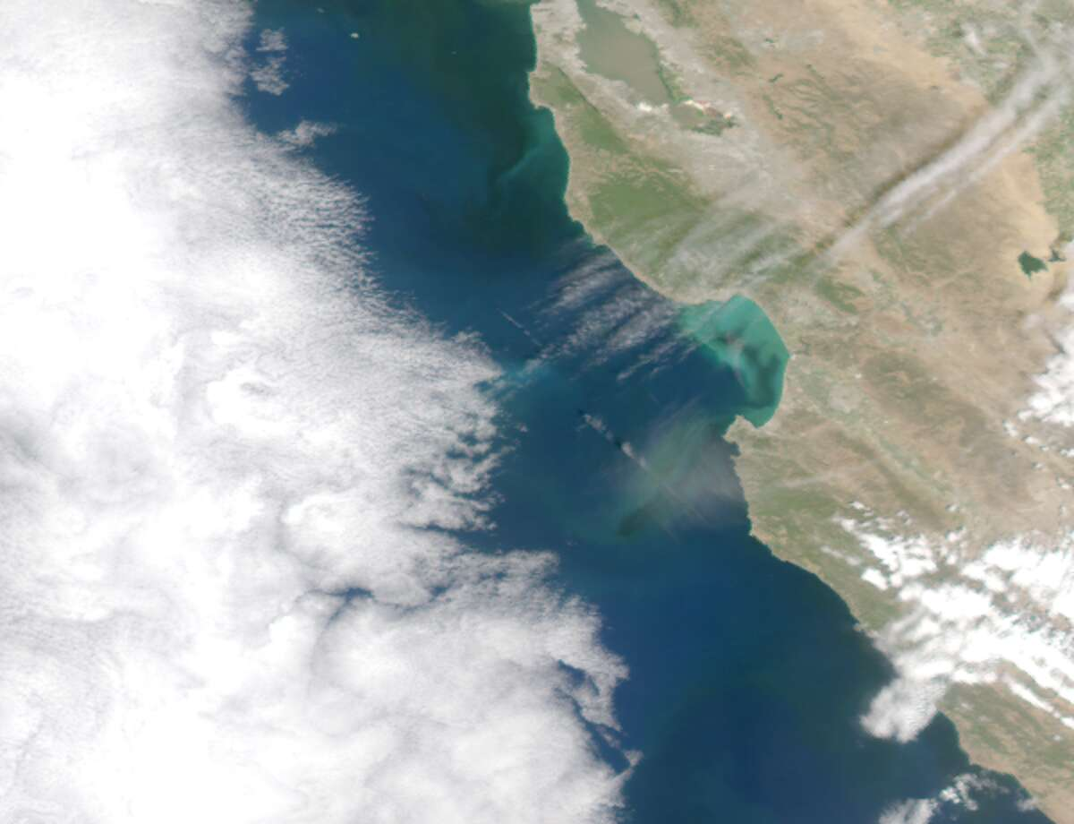 An images created with data from NASA's AQUA satellite, by biological oceanographer John Ryan at the Monterey Bay Aquarium Research Institute shows a coccolithophores bloom that has temporarily changed the color of Monterey Bay. The satellite imagery is the highest resolution available.