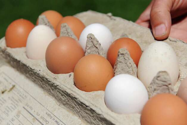 Fresh farm eggs on Tuesday, July 22, 2015, at Beekman 1802 Farm in Sharon Springs, N.Y. (Cindy Schultz / Times Union) Photo: Cindy Schultz / 00032722A